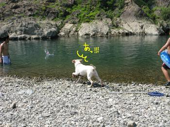 blog画像 163.JPG